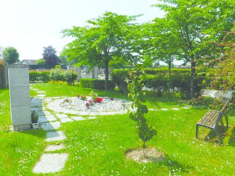 Arbre aux mouchoirs au cimetière Notre Dame