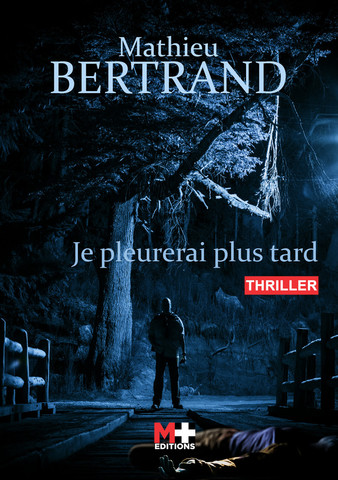 Je pleurerai plus tard - Bertrand Mathieu
